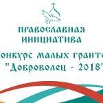 Открыт конкурс малых грантов «Доброволец — 2018»