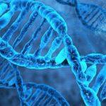 Религия и наука о начале человеческой жизни