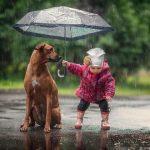 Мы призваны быть милостивыми
